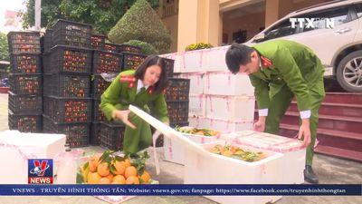 Nghệ An phát hiện 2 tấn hoa quả không rõ nguồn gốc