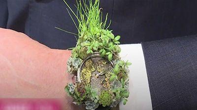 Độc đáo bộ sưu tập đồng hồ từ hoa cỏ thật
