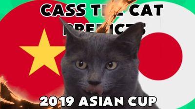CĐV Việt Nam 'há hốc mồm' nhìn mèo Cass dự đoán Tứ kết với Nhật Bản