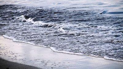 Đà Nẵng: Nước biển đổi màu đen ngòm sau Tết Nguyên đán