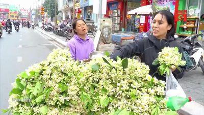 Tiết lộ thu nhập 'khủng' của gánh hàng rong bán hoa bưởi