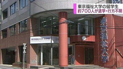 Đa số du học sinh Việt Nam 'biến mất' ở Nhật đang học dự bị đại học