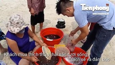 Nhộn nhịp chợ hải sản tươi sống trên bãi biển Đà Nẵng