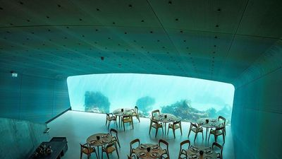 Ăn thử ở nhà hàng dưới nước đầu tiên ở châu Âu với 10 triệu đồng/người