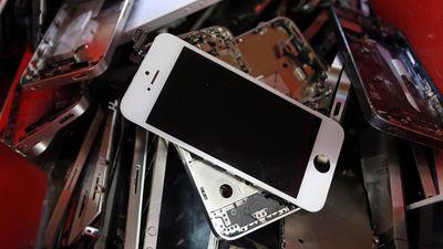 'Kiếp sau' của những chiếc iPhone