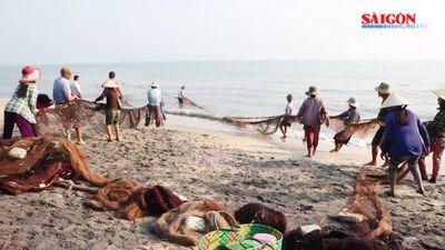 Kéo 'lưới rồng' bắt 2 tấn cá ở Huế