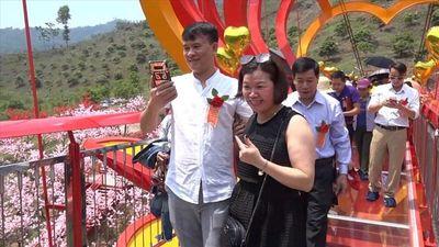 Du khách thích thú trải nghiệm cầu kính 5D đầu tiên ở Việt Nam