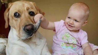 Tan chảy với những khoảnh khắc đáng yêu của trẻ con với thú cưng