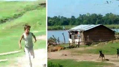 CLIP: Hổ dữ vào làng đòi tấn công người thì bị chó 'dằn mặt'