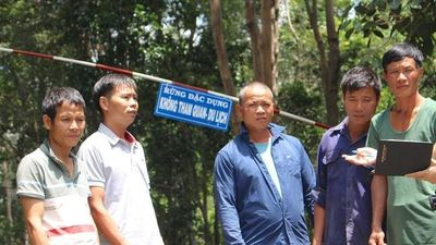 Clip diễn biến kịch tính vụ án cưa gỗ khô ở Kon Tum