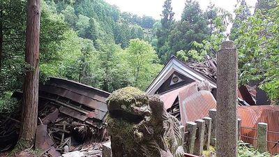 Ngôi làng bỏ hoang 20 năm bị thiên nhiên 'nuốt chửng'