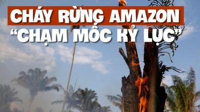 Rừng Amazon, 'lá phổi' của trái đất, lâm nguy trong lửa khói