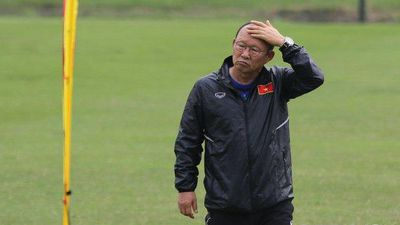 Chuyên gia: 'Cần tôn trọng, không gây áp lực với HLV Park Hang Seo'
