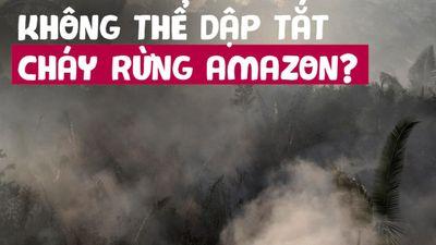 Cháy rừng Amazon sẽ dẫn đến 'vòng xoáy tử thần'?