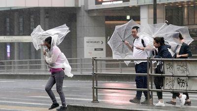 Cách đối phó với những cơn bão lớn như Hagibis