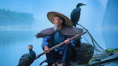 Nghệ thuật câu cá bằng chim cốc trên dòng Li Giang