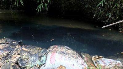 Nước máy Hà Nội bốc mùi lạ vì dầu thải: Hung thủ nào 'xả' vào nguồn nước Sông Đà?