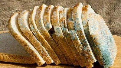 Điều gì xảy ra nếu bạn ăn bánh mì bị mốc?