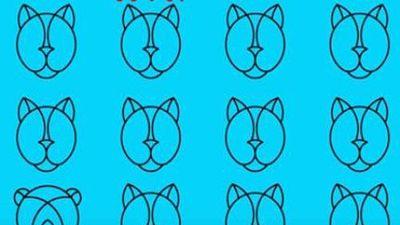 CLIP: Bạn có vượt qua 10 câu đố tìm hình khác biệt ở thử thách này không?