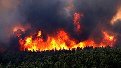 Nguyên nhân gây nên cháy rừng thảm khốc tại Australia