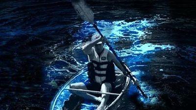 Chèo thuyền trong suốt giữa biển nước phát ánh sáng xanh