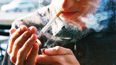 Bộ phổi đen sì của người nghiện thuốc lá