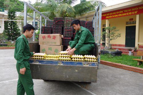 Đồn BP Bản Lầu: Bắt vụ vận chuyển trái phép 24 nghìn quả trứng gia cầm