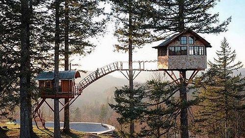 Chùm ảnh: Ngắm các ngôi nhà trên cây đẹp nhất thế giới