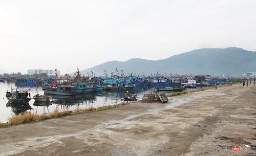 Đà Nẵng: Dừng xây dựng tuyến luồng Thọ Quang