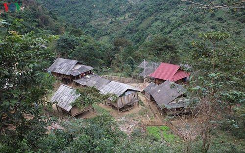 Bán bào thai: Những câu chuyện đau lòng ở huyện miền núi Nghệ An