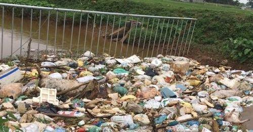 Xác lợn vẫn nổi lềnh bềnh, huyện Phú Bình chưa vào cuộc