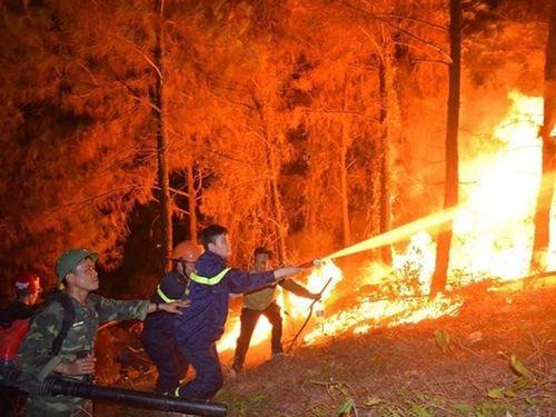 Bài học sau 'bão lửa' kinh hoàng ở Hà Tĩnh