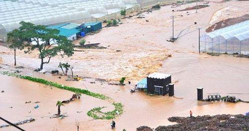 Miền cao ngập lụt kinh hoàng