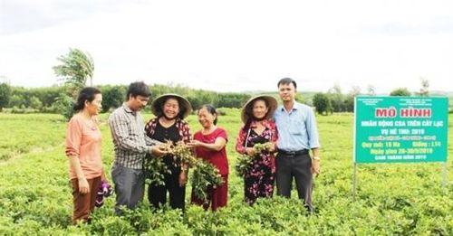 Sản xuất cây trồng cạn áp dụng tưới tiết kiệm: Tối ưu trên cả ba mặt