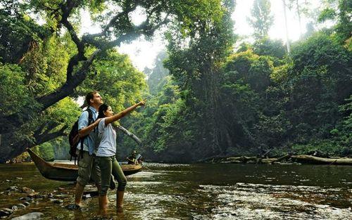 Háo hức đến thăm Taman Negara - Công viên quốc gia lâu đời nhất ở Malaysia