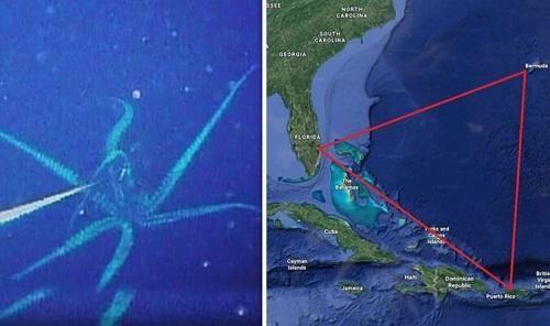 Bí ẩn Tam giác quỷ Bermuda: Khám phá những sinh vật kỳ bí khiến tàu thuyền mất tích