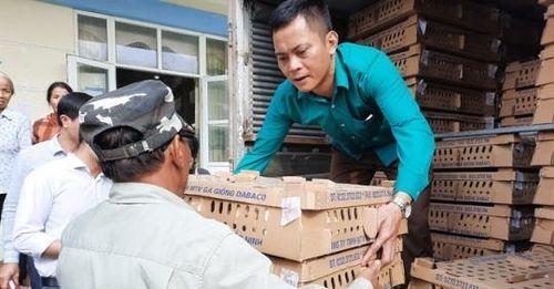 Hỗ trợ Hà Nam 5 vạn gà giống J-Dabaco chuyển đổi chăn nuôi