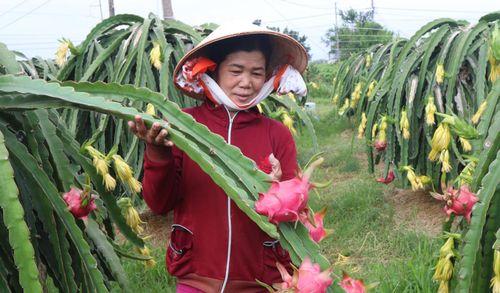 Bình Thuận nỗ lực khơi thông dòng vốn đầu tư