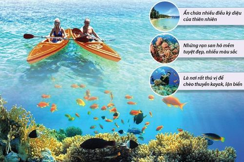 Nha Trang lọt Top 10 điểm lặn biển đẹp nhất thế giới 2020
