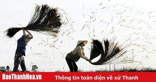 Cảm nhận cuộc thi ảnh nghệ thuật 'Nét đẹp lao động trong thời kỳ đổi mới' trên Tạp chí Văn nghệ Xứ Thanh