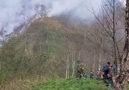 Nỗ lực cứu rừng trên đỉnh Lếch Mông