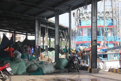 Thiếu lao động đi biển, nghề cá khó khăn