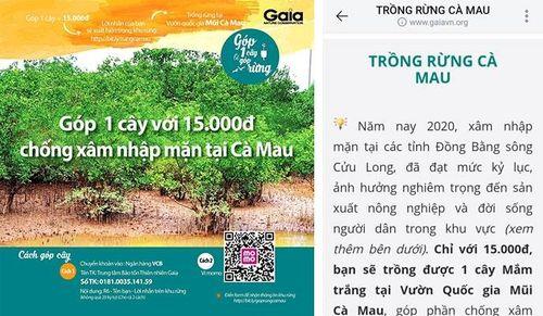 Làm rõ việc vận động trồng rừng ngập mặn ở Cà Mau