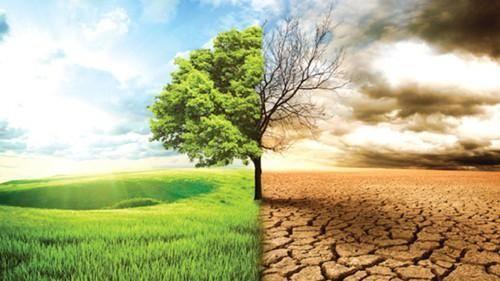 Quỹ Khí hậu Xanh hỗ trợ chống chịu với BĐKH tại Tây Nguyên-Nam Trung Bộ