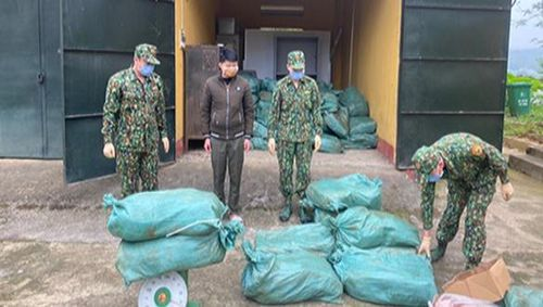 Bắt giữ 2000 kg hàng đông lạnh trái phép từ Việt Nam sang Trung Quốc
