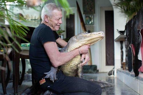 Người đàn ông sống chung nhà với cá sấu, rắn, nhện
