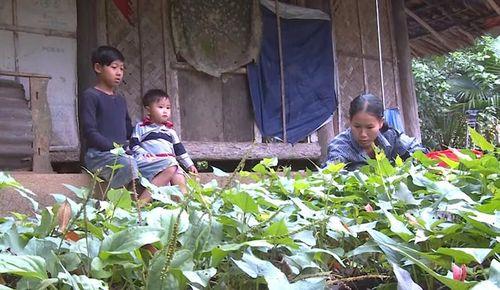 Hai mẹ con nghèo, bệnh nặng