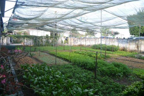 Đức Thọ phấn đấu đến tháng 6/2020 đạt chuẩn huyện nông thôn mới