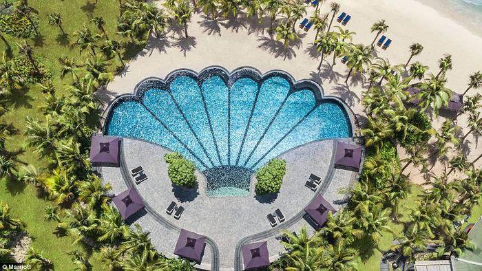 Thiết kế bể bơi hình vỏ sò