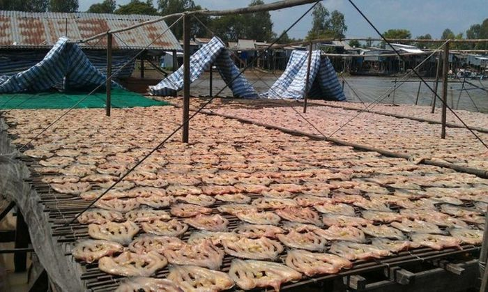 Vì sao khô cá lóc miền Tây luôn thu hút khách 115534ea42ababf5f2ba